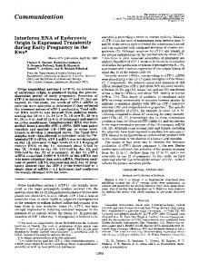 Interferon RNA of embryonic origin is expressed transiently during ...