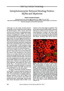 Interphotoreceptor Retinoid Binding Protein; Myths and Mysteries