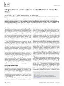 Interplay between Candida albicans and the Mammalian Innate Host ...