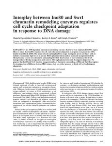 Interplay between Ino80 and Swr1 chromatin remodeling enzymes ...