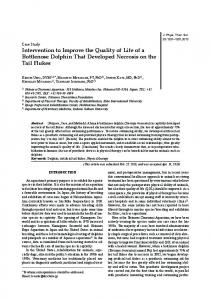 Intervention to Improve the Quality of Life of a