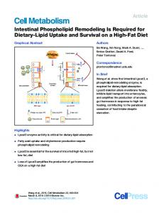 Intestinal Phospholipid Remodeling Is Required for Dietary-Lipid