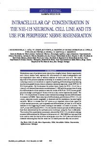 INTRACELLULAR Ca2+ CONCENTRATION IN