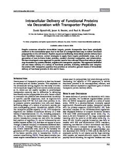 Intracellular Delivery of Functional Proteins via Decoration with