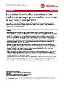 Intracellular fate of carbon nanotubes inside murine