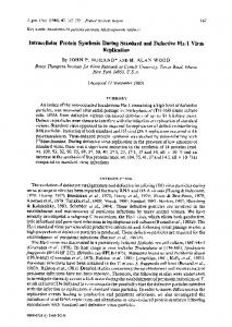 Intracellular Protein Synthesis During Standard and ... - CiteSeerX