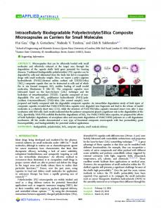 Intracellularly Biodegradable Polyelectrolyte/Silica ... - ACS Publications