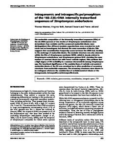 Intragenomic and intraspecific polymorphism of the 16S ... - CiteSeerX