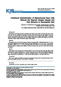Intrathecal Administration of Mesenchymal Stem ... - KoreaMed Synapse