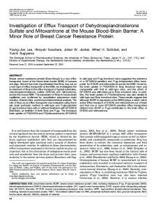 Investigation of Efflux Transport of Dehydroepiandrosterone Sulfate ...