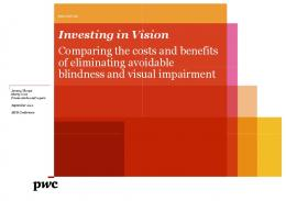 Investing in Vision ting in Vision