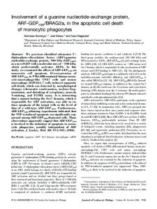Involvement of a guanine nucleotide-exchange protein, ARF-GEP100 ...