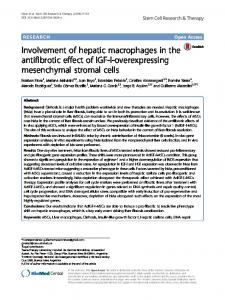 Involvement of hepatic macrophages in the antifibrotic effect of ... - Core