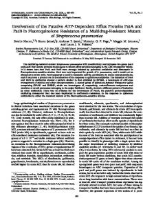 Involvement of the Putative ATP-Dependent Efffux Proteins PatA and ...
