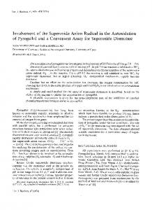 Involvement of the Superoxide Anion Radical in the ... - CiteSeerX