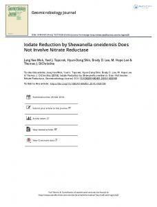 Iodate Reduction by Shewanella oneidensis Does ...