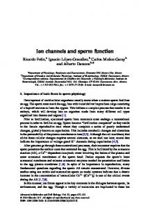 Ion channels and sperm function