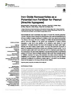 Iron Oxide Nanoparticles as a Potential Iron Fertilizer for ... - Frontiers