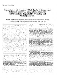 Is Differentially Regulated by Wounding and Methyl ...