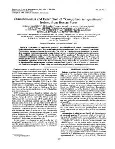 Isolated from Human Feces - Journal of Clinical Microbiology