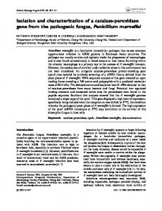 Isolation and characterization of a catalase-peroxidase gene from the ...