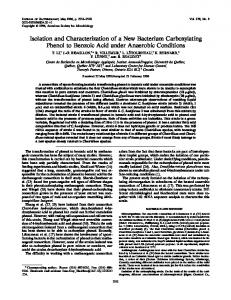 Isolation and Characterization of a New Bacterium Carboxylating ...