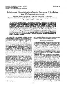 Isolation and Characterization of Acetyl-Coenzyme A Synthetase from ...