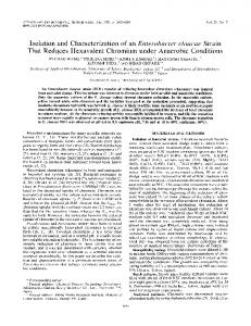 Isolation and Characterization of an Enterobacter cloacae Strain That ...