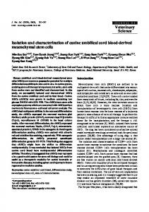 Isolation and characterization of canine umbilical cord blood-derived ...