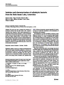 Isolation and characterization of cellulolytic bacteria from the Stain ...