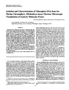 Isolation and Characterization of Chloroplast DNA from the Marine ...