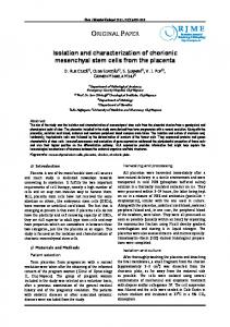 Isolation and Characterization of Chorionic Mesenchymal Stem Cells ...