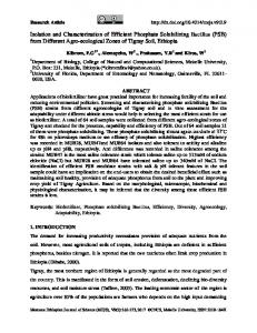 Isolation and Characterization of Efficient Phosphate ...