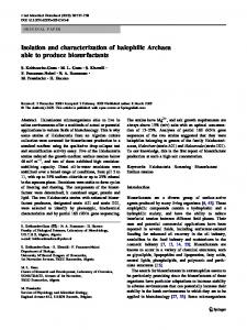 Isolation and characterization of halophilic Archaea able to produce ...