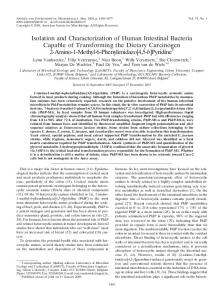 Isolation and Characterization of Human Intestinal Bacteria Capable of ...