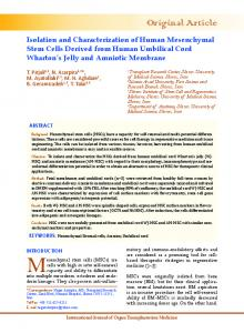 Isolation and Characterization of Human Mesenchymal Stem Cells