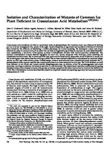 Isolation and Characterization of Mutants of ... - Plant Physiology