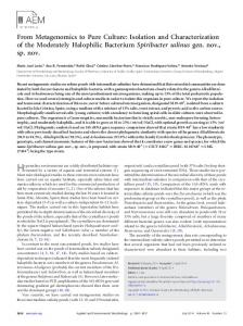 Isolation and Characterization of the Moderately Halophilic Bacterium ...