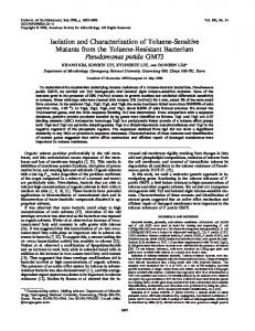Isolation and Characterization of Toluene-Sensitive Mutants from the ...