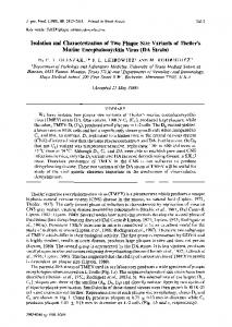 Isolation and Characterization of Two Plaque Size Variants of Theiler's ...