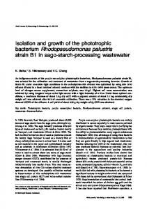 Isolation and growth of the phototrophic bacterium ... - Springer Link