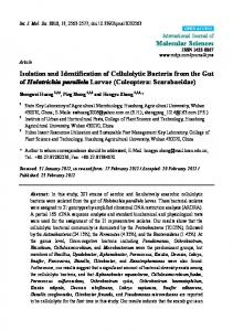 Isolation and Identification of Cellulolytic Bacteria from the ... - CiteSeerX