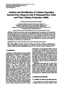 Isolation and Identification of Cellulose Degrading ... - CiteSeerX