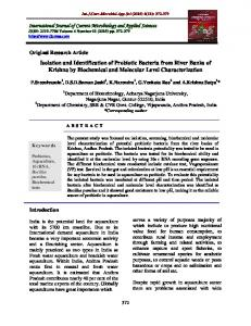 Isolation and Identification of Probiotic Bacteria from River Banks of ...