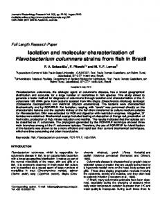 Isolation and molecular characterization of ... - Academic Journals