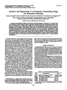 Isolation and Sequencing of a Temperate Transducing Phage for ...