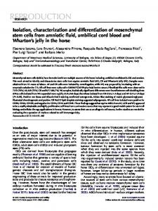 Isolation, characterization and differentiation of mesenchymal stem ...