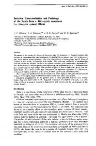 Isolation, Characterization and Pathology of the Toxin from a ...