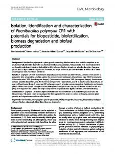 Isolation, identification and characterization of Paenibacillus ... - Core