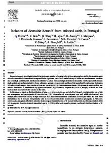 Isolation of Besnoitia besnoiti from infected cattle in Portugal
